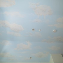 Imaginary animal shape clouds